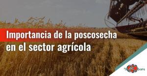 Importancia de la poscosecha en el sector agrícola